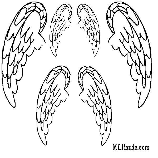 ANGEL WINGS TEMPLATE for book page wings
