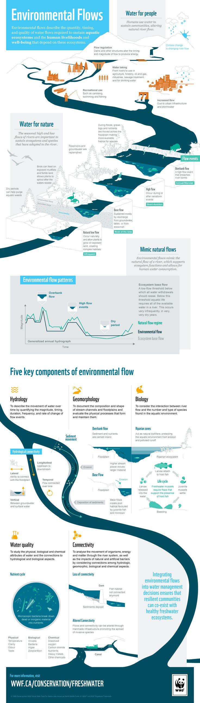 Environmental Flows  © WWF-Canada