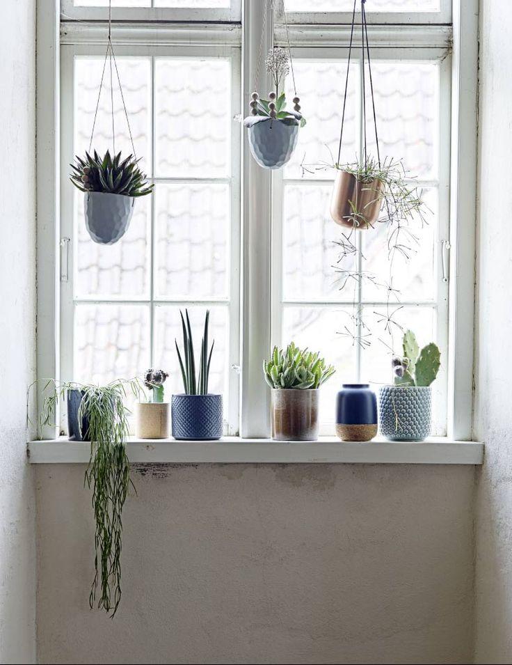 best 25 window sill decor ideas on pinterest window plants indoor succulents and indoor. Black Bedroom Furniture Sets. Home Design Ideas