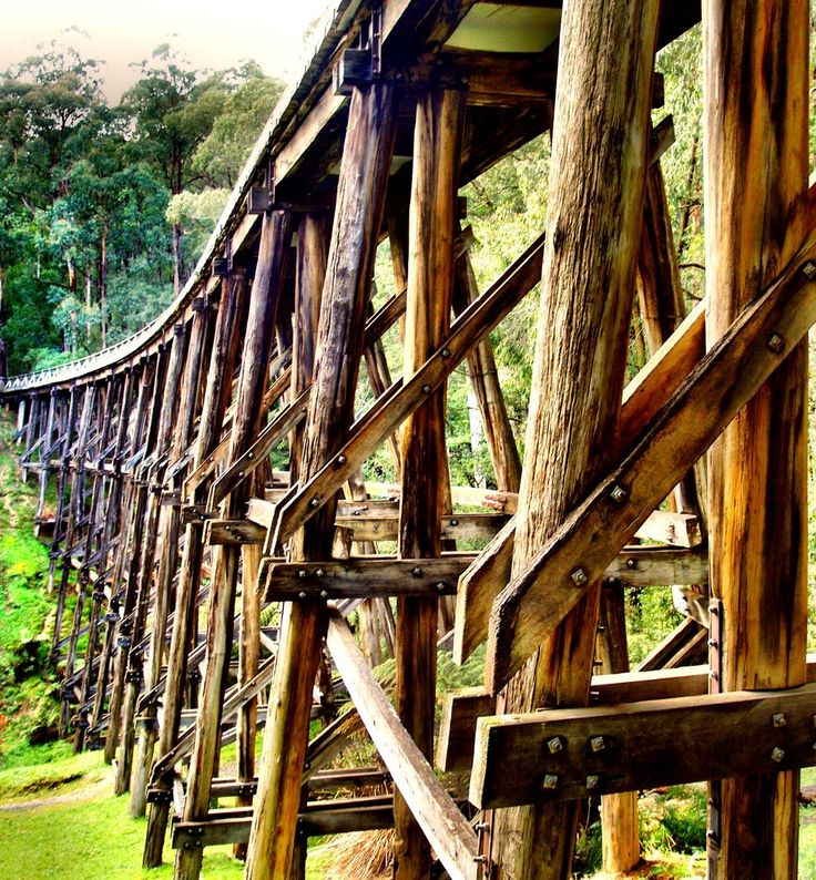 ABC OPEN: Historic Trestle Bridge || From Project: Snapped: Australian Landscapes Noojee