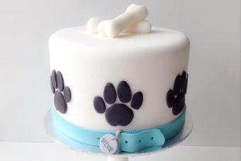 Hazle una torta de cumpleaños a tu perro