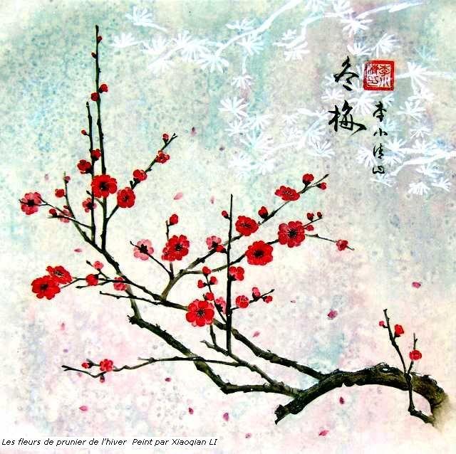 Photos cerisier japonais en fleur dessin