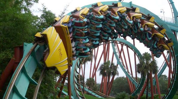 Kumba Busch Gardens Tampa Question That
