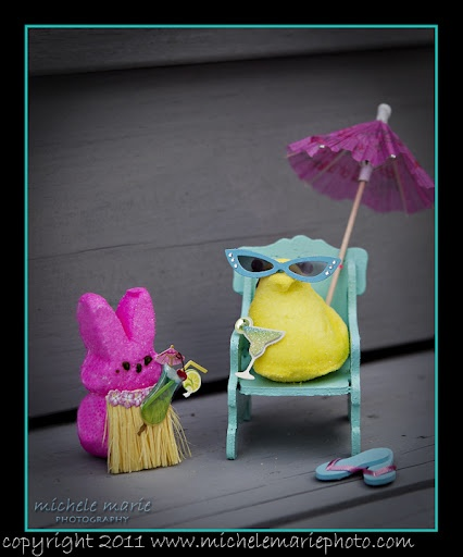 Project Dreams Marshmallow: 242 Best All Things Peeps Images On Pinterest
