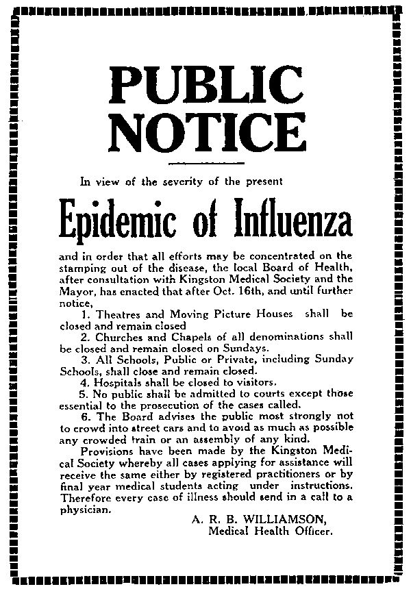the 1918 influenza pandemic essay The influenza pandemic of 1918 the influenza pandemic of 1918-1919 killed more people than the great war, known today as world war i (wwi), at somewhere between 20 and 40 million people.