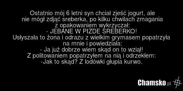 Sreberko - chamsko.pl