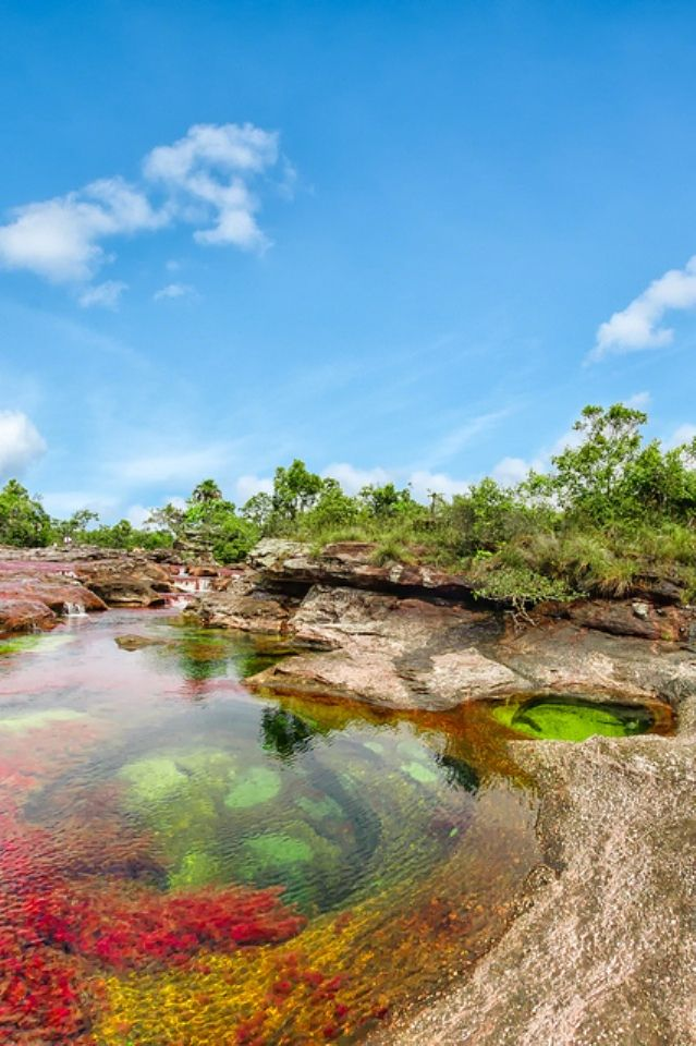 Natural pools of Caño Cristales, Sierra de la Macarena, Colombia