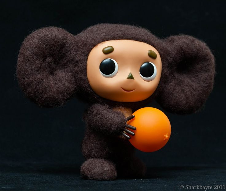 Uncharted Waters-Sharkbayte's Photographs: Hi! They call me Cheburashka.