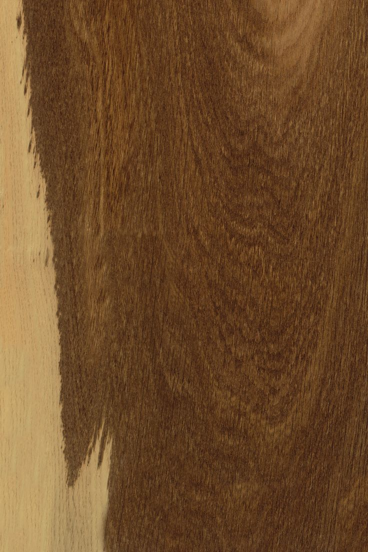 Brauneiche   Furnier: Holzart, Eiche, Blatt, hell, dunkel, braun, Laubholz #Holzarten #Furniere #Holz