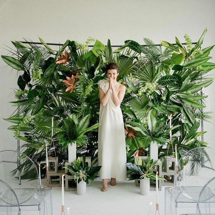 фотозона в тропическом стиле лёгкий