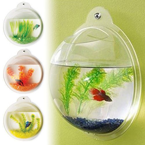 NEW! WALL MOUNTED FISH TANK - BETTA BUBBLE AQUARIUM - WITH PLANT, ROCKS AND MORE in Pet Supplies | eBay