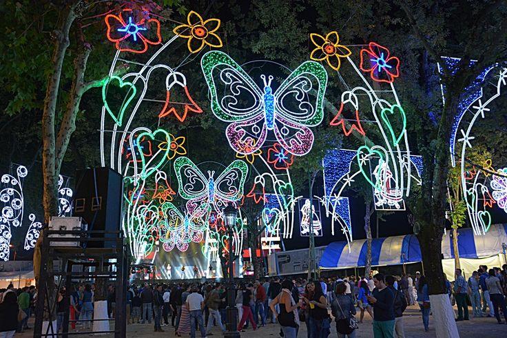 Arco alumbrado espectacular en las fiestas de Guillarei, Tui con laterales de varias flores y centros de mariposas  www.electromiño.es  #electromiño #CiudadesNavidad #luz #colores #mariposa #leds #led #alumbrado #alumbradofiestas #flores #laterales #lucesdecolores #blanco #fucsia #tui
