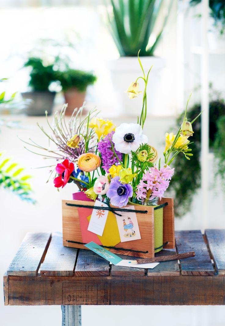 13 best fleurs de printemps images on pinterest spring. Black Bedroom Furniture Sets. Home Design Ideas