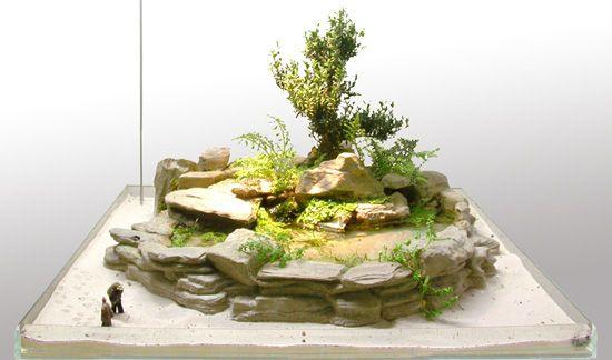 ... Jardin Aquatique ~ Idées de conception de jardin pour votre maison