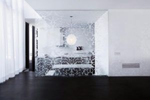Glass Wall Design Pictures