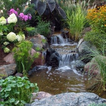 I love it water garden design garden ponds pond for Ornamental pond waterfall