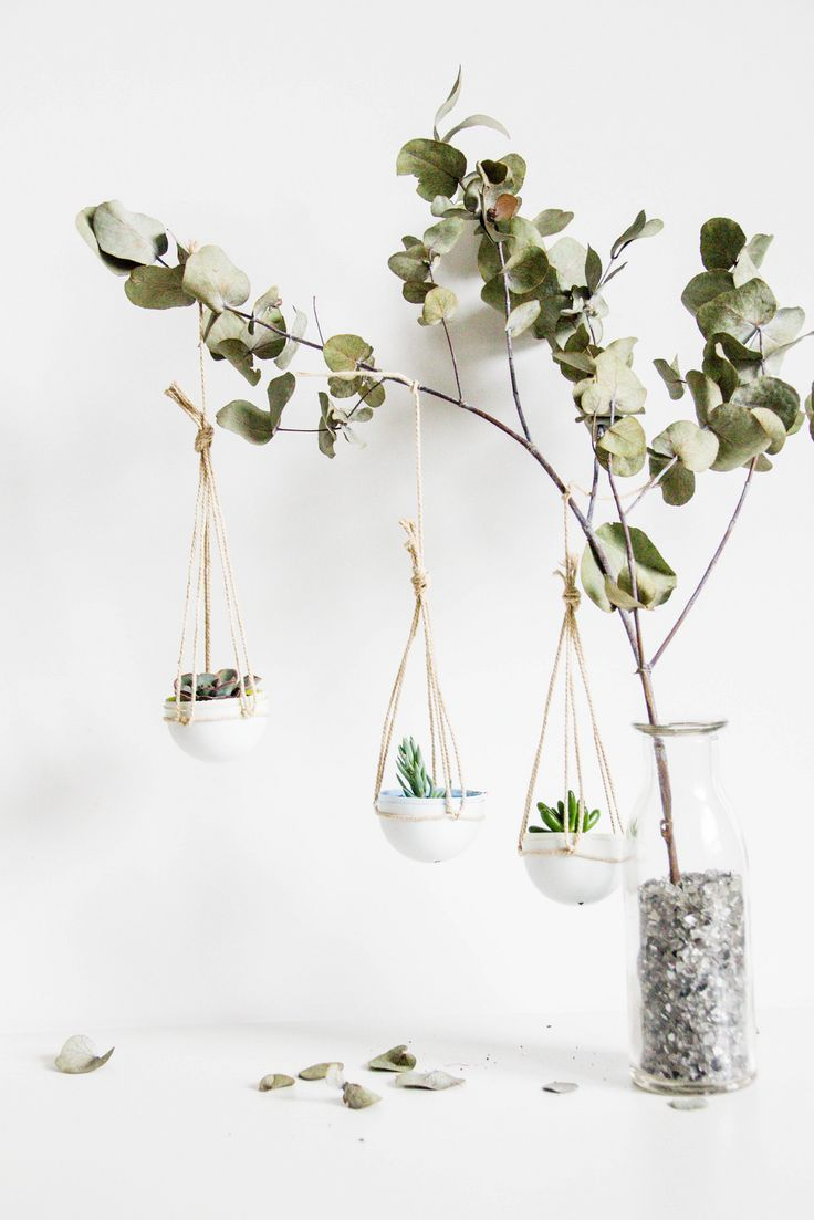 Urban Jungle Bloggers Easter Hanging Planters