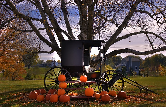 Fall Desktop Wallpaper Pinterest Amish Buggy Amish Country Autumn And Amish Culture