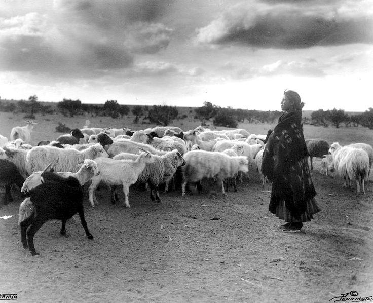 Navajo sheepherder. Early 1900s. Arizona/New Mexico.