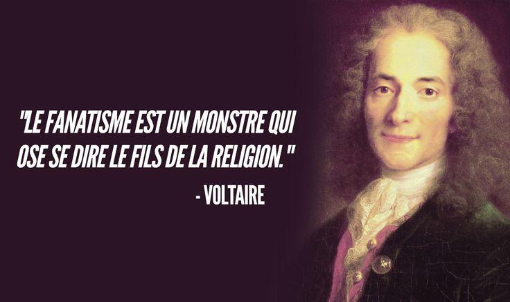 """On accorde souvent à Voltaire la célèbre citation : """"Je ne suis pas d'accord avec ce que vous dites, mais je me battrai jusqu'au bout pour que vous puissiez le dire"""". C'est une erreur ! Voici ce qu'il a dit."""
