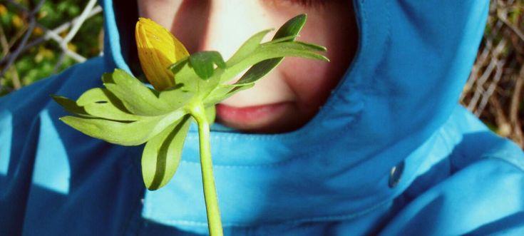 Grønne omgivelser gør indtryk selv på små børn | Lev nu | DR