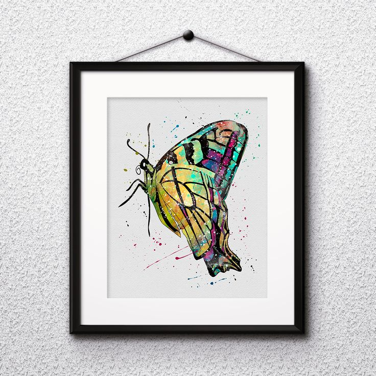 Butterfly wall art prints, posters, wall paintings, watercolor art, home decor