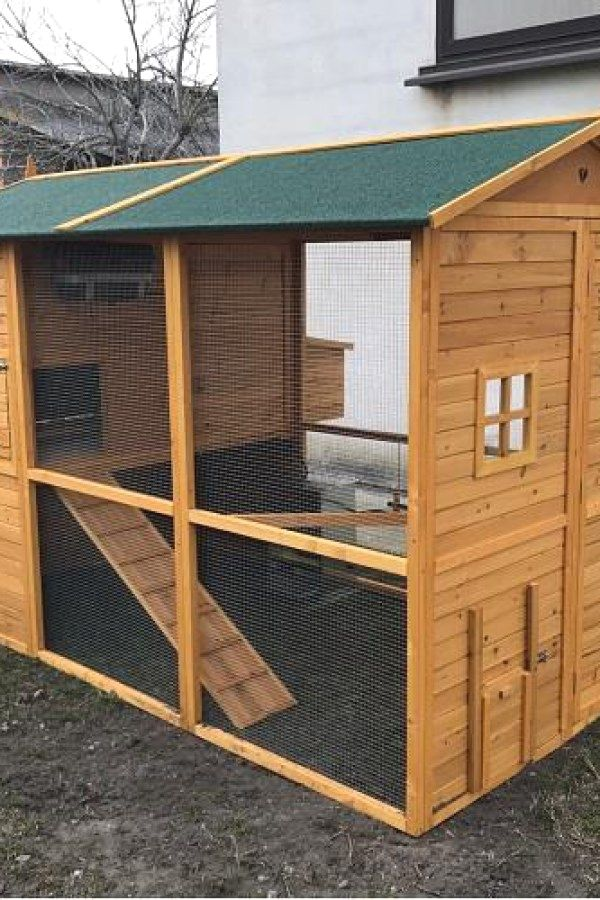 50 Easy Diy Chicken Coop Kits You Can Try For Your Home Chicken