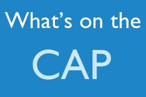 What's on the CAP-The Certified Authorization Professional, or CAP, certification is an objective measure of the knowledge, skills, and abilities that are required for personnel involved in the process of authorizing and maintaining information systems. The CAP exam consists of 7 domains each divided into key areas of knowledge.