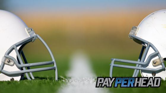 Online Bookie Tips: 2017 NFL Conference Standings & Risk Management https://payperhead.com/2017-nfl-conference-standings/  #bookies #bettingtips #NFL