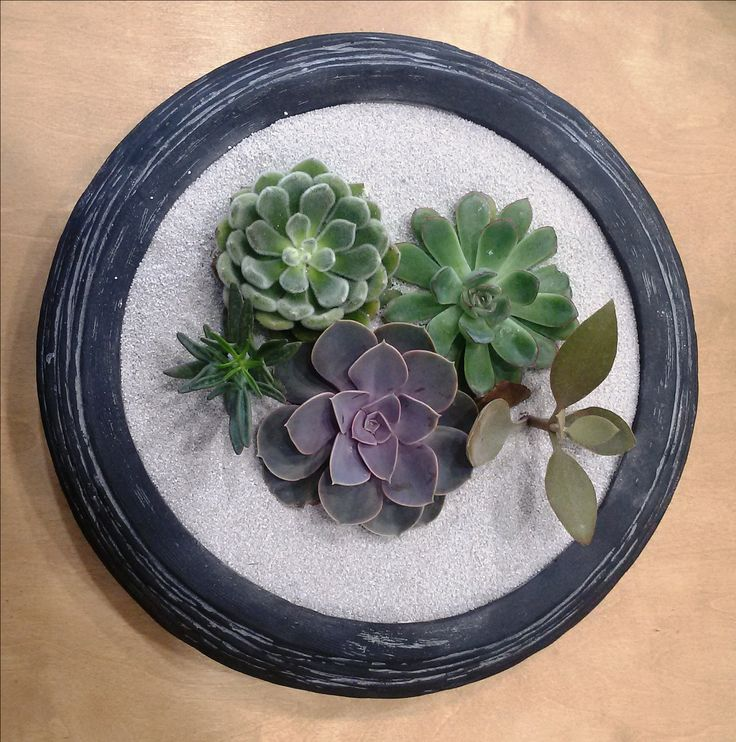 Centerpiece with succulents! #greenery #greeneryartofplants #succulents #centerpiece #chania #crete