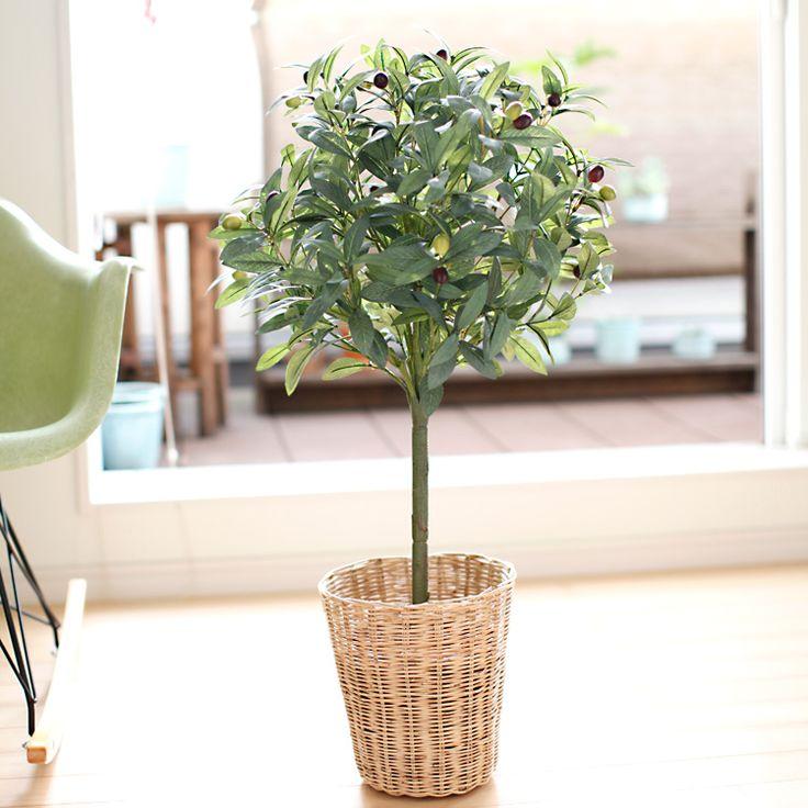 先日新作として掲載したばかりの「オリーブの木 トピアリー」をご紹介します。 高さ80cm と色々な場所に飾りやすいサイズで、2色の実がついています。 葉っぱの色合いもよくできているので、一見、本物と見間違えてしまいそうなぐらいです。造花ドットコム zouka.com