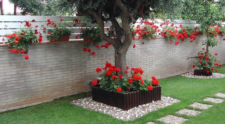 ¿Tienes un jardín pequeño y no sabes cómo hacer para que sea vistoso? Aquí te dejo algunos consejos fáciles que espero que te sirvan de orientación.