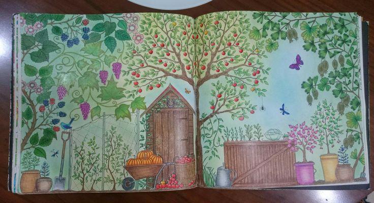 Johanna Basford Secret Garden   Esrarengiz bahçe boyama kitabı kabak üzüm elma klube prismacolor Faber Castell kuru pastel