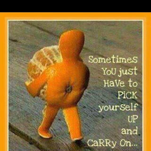 Inspiration, Funny Pics, Quotes, Pick Yourself Up, Orange You Glad, Funny Pictures, Keep Going, Too Funny, So True