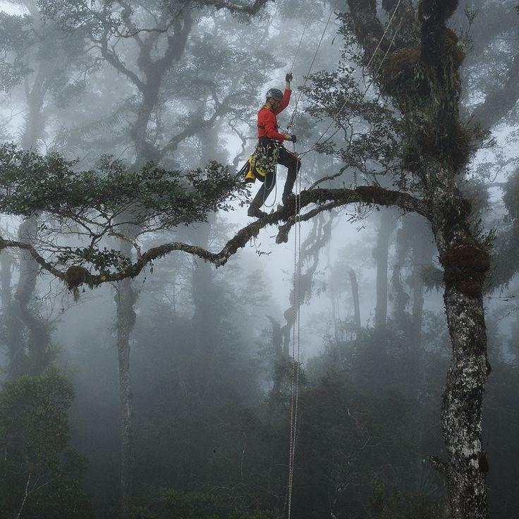 8 best Saut en parachute à Belle-île-en-Mer images on Pinterest