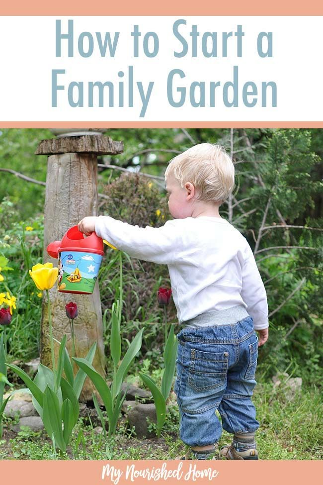 How to Start a Family Garden via /mynourishedhome/