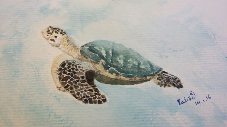 My #water colour #painting of a #sea #turtle