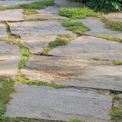 Photo: John Gruen | thisoldhouse.com | from Building Blocks for a Perfect Patio