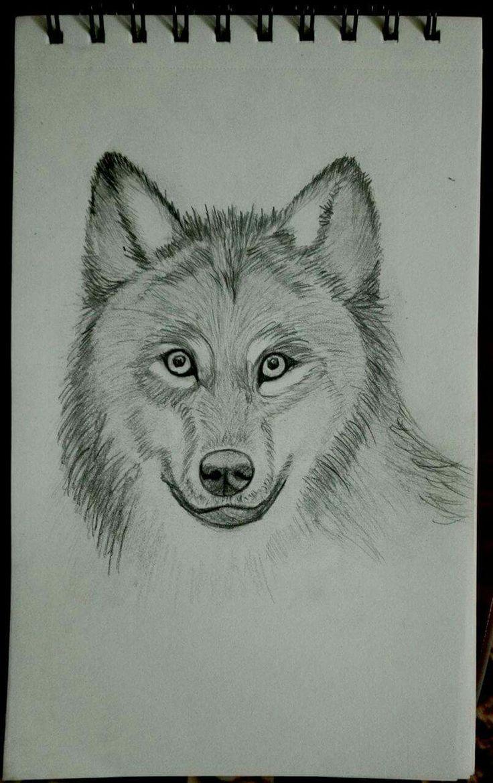 Cutie wolf, pencil
