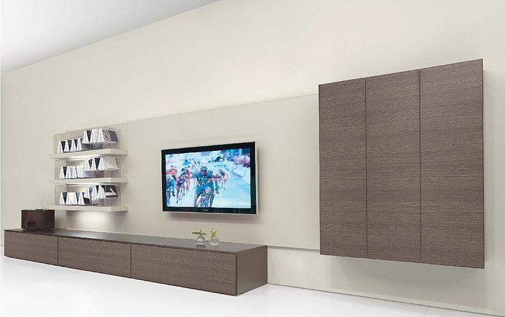 elegant-tv-wall-system