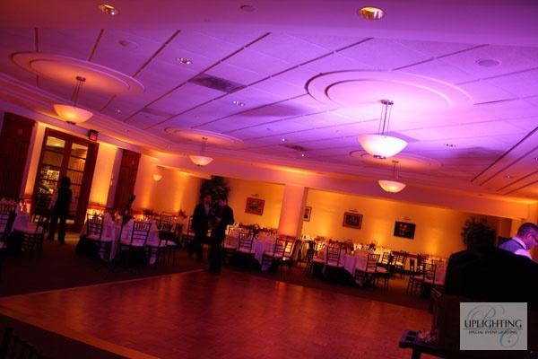 yellow + purple uplighting