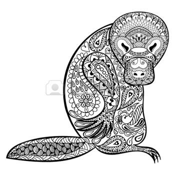 Zentangle Australian Platypus Totem For Adult Anti Stress Coloring Page Art Therapy
