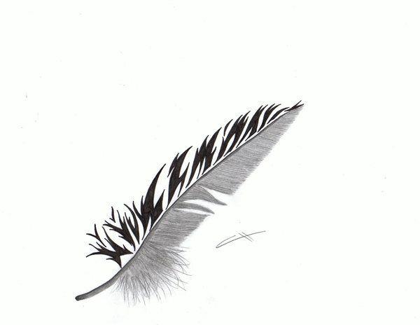 feather tattoo by ~blazeEkoWolf on deviantART