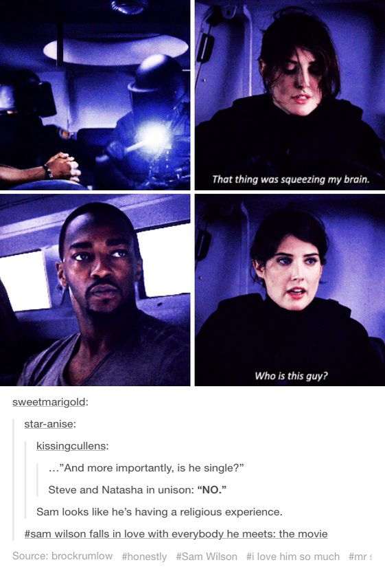 Sam Wilson, the Falcon, Maria Hill, SHIELD, Avengers, Captain America, Captain America the Winter Soldier, catws, tumblr