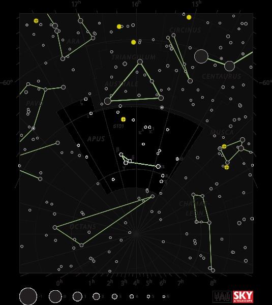 Apus (Birds of Paradise)   Constellations   Pinterest ...