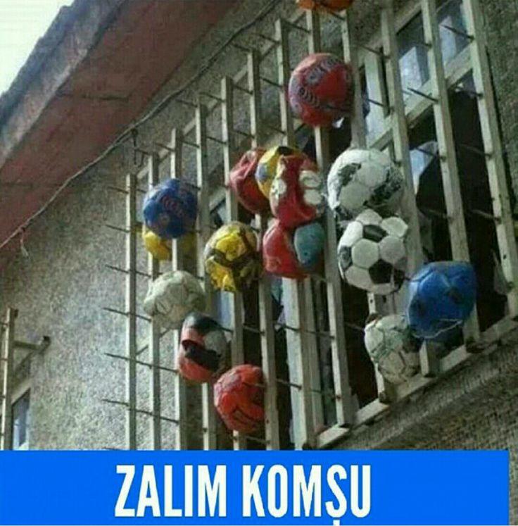 ZALIMMMMM