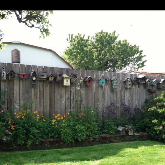 Row of birdhouses, this could be on my fence in, oh about 10 years LOL people send me bird houses please LOL
