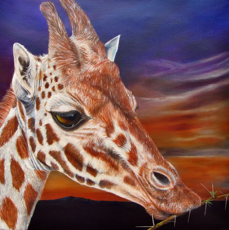 HAPPY MEAL - Giraffe, oil on canvas, 70x70