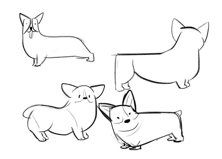 Corgi Drawing Sketch Coloring Page Corgi Coloring Pages