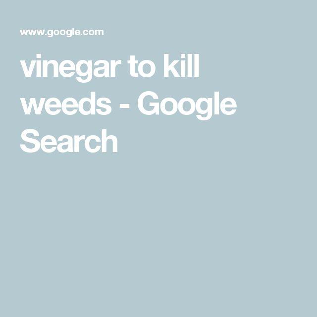 Best 10+ Killing Weeds Ideas On Pinterest